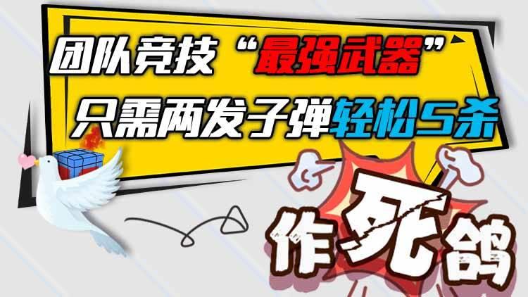 """作死鸽:团队竞技""""最强武器"""",只需两发子弹轻松5杀"""