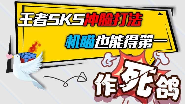 作死鸽:王者SKS冲脸打法,机瞄也能得第一